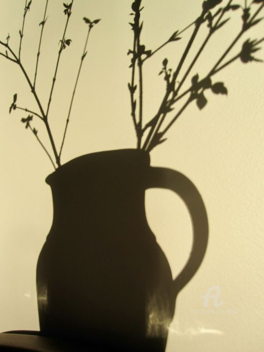 860 years - © 2019 shadow, flowerpot, holland, michigan, outline, vase, pitcher, American Online Artworks