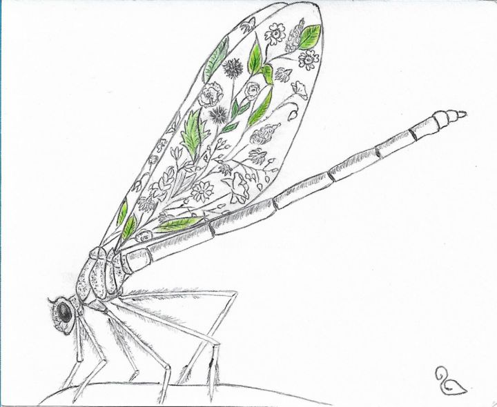 Dragonfly - Drawing,  4.1x4.9 in, ©2017 by La Souris -                                                                                                                                                                                                                                                                                                                                                                                                                                                                                                                                                                                                                                      Illustration, illustration-600, Animals, Flower, animaux, insectes, libellule, dragonfly, fleurs, plantes, noir, blanc, vert