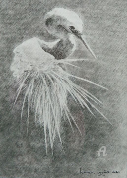 """Drawing titled """"Egreta in black and…"""" by Liliana Lazar, Original Art, Charcoal"""