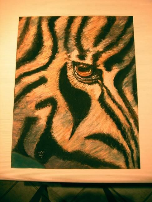 LE ZEBRE A L'OEIL!! - Drawing,  27.6x19.7 in, ©2007 by Koki -                                                                                                                                                                                                      Colors, ZEBRE, vue de près, au pastel sec