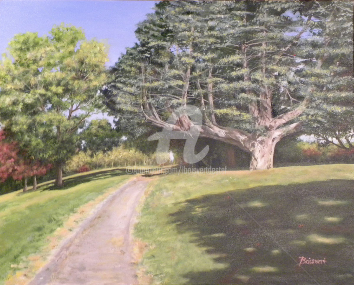 Old Friend - Painting,  29x35x1.5 in ©2015 by Linda Boisvert DeStefanis -                                                            Realism, Canvas, Tree, tree, path, park
