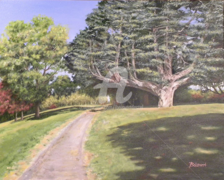 Old Friend - Painting,  29x35x1.5 in, ©2015 by Linda Boisvert Destefanis -                                                                                                                                                                                                                                                                                                                  Figurative, figurative-594, Tree, tree, path, park