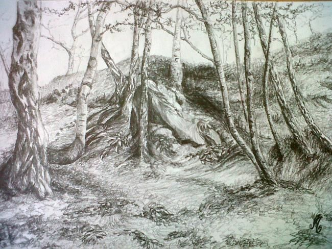 D-F.A.-1. - Drawing,  40x30 cm ©2012 by Murielle Léger -                            Black and White, fôrets ardennaises