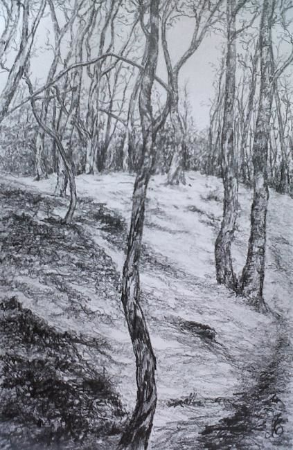 D-F.A.-4. - Drawing,  40x30 cm ©2012 by Murielle Léger -                            Black and White, fôrets ardennaises