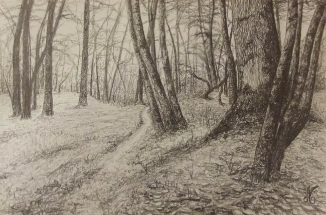 D-F.A.-7. - Drawing,  30x40 cm ©2012 by Murielle Léger -                            Black and White, fôrets ardennaises