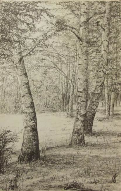 D-F.A.10. - Drawing,  40x30 cm ©2012 by Murielle Léger -                            Black and White, forêts ardennaises