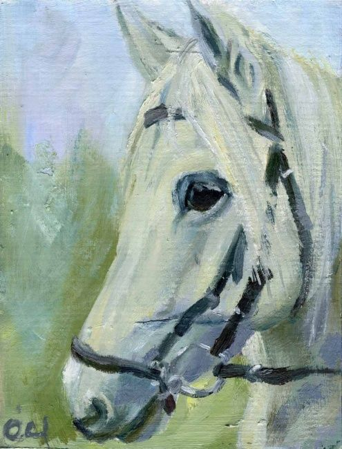 Horse Head Oil Paintings