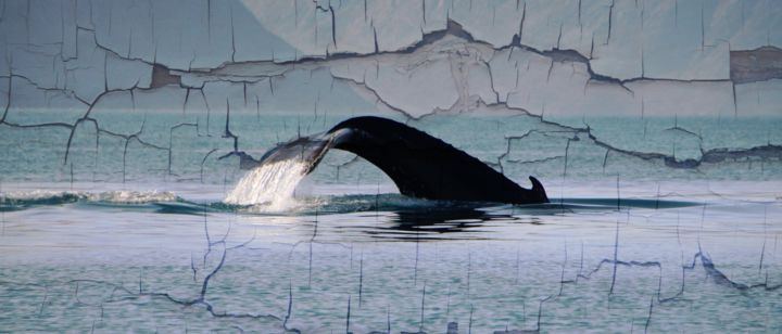 """Photography titled """"Humpback Whale"""" by Leo Tujak, Original Art, Manipulated Photography"""