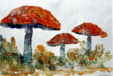 Mushrooms Ghost - Painting,  7x10 in ©2007 by Lesley Braren -