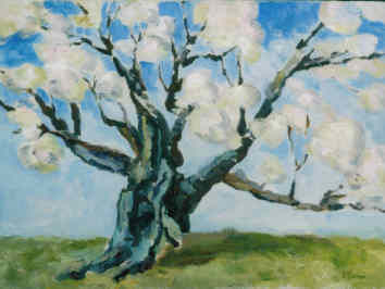 Old Apple Tree - Painting,  12x16 in ©2000 by Lesley Braren -