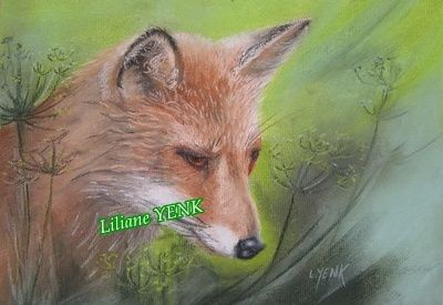Renard - Painting,  30x22 cm ©2012 by Liliane YENK -