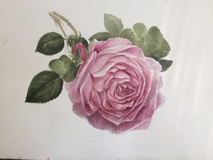 Rosa - Painting ©2016 by L.Jakobsson -                                        Paper, Flower