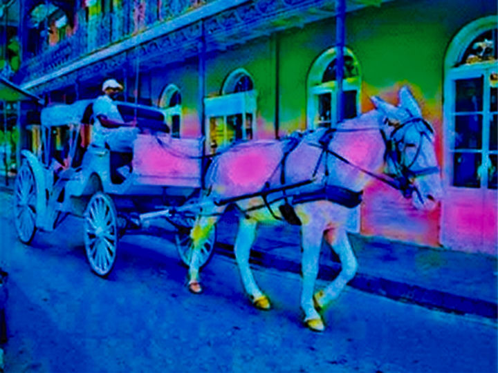 """Photography titled """"Mule and buggy ride…"""" by Lisa Kendall Mitchell, Original Art, Digital Photography"""