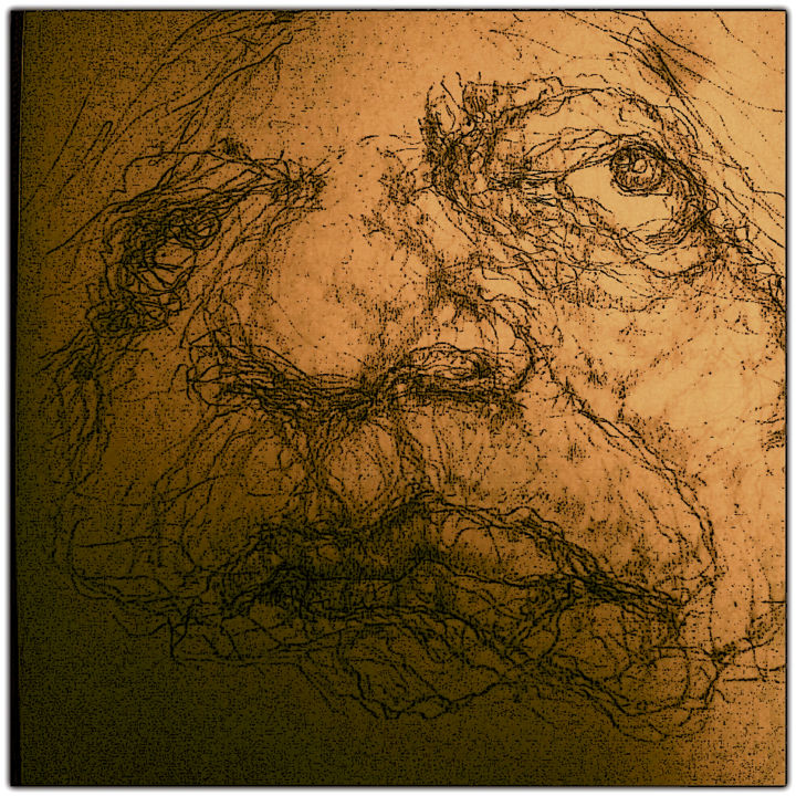 """Drawing titled """"Susan Sontag carica…"""" by Florian T, Original Art, Pencil"""