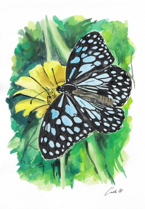 butterfly-4.jpg - Painting,  30x21x0.2 cm ©2017 by Ludo Sevcik -                                                                        Conceptual Art, Illustration, Paper, Nature, watercolor, ink, drawing, butterfly, nature