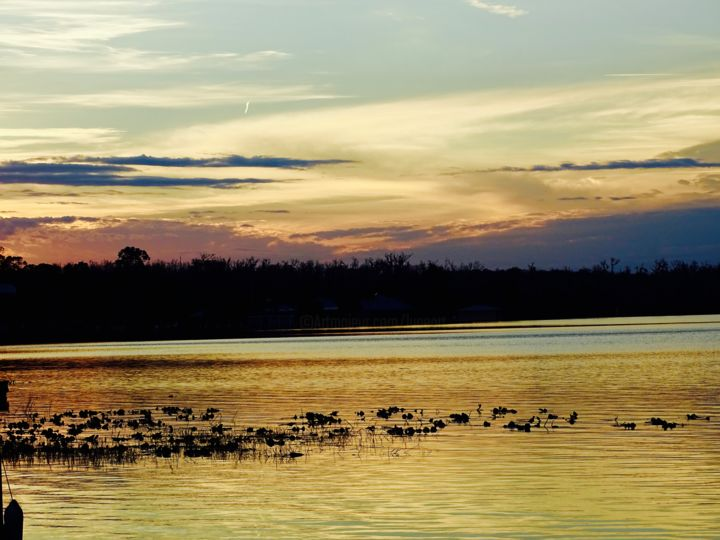 """Photography titled """"SEPIA SUNSET"""" by Lupe Rocha, Original Art,"""