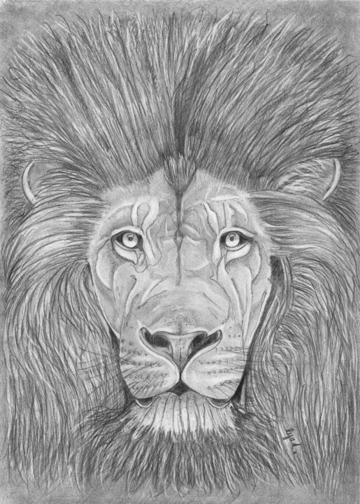 Le lion sage - Drawing,  11.7x8.3 in, ©2019 by Eric SCHROEDEL -                                                                                                              Animals, lion
