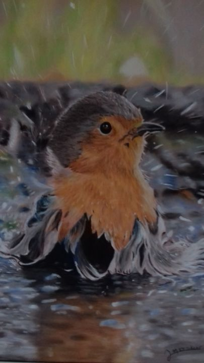 le rouge gorge prend son bain - Painting,  19.7x15.8 in, ©2018 by Portraits animaliers -                                                                                                                                                                          Figurative, figurative-594, Animals