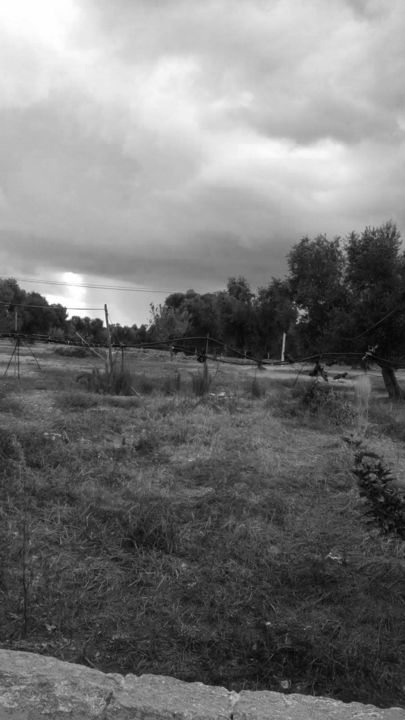 The Golden Age: Outdoor-37 - ©  fotografia, paesaggio, photography, landscape, Black and White Online Kunstwerke