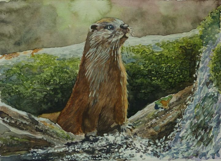 """Painting titled """"loutre"""" by Marc Pfund, Original Art, Watercolor"""