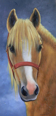 """Le beau blond"" - Painting,  10x20 in ©2009 by Marguerite Vanasse -                            Realism, Cheval, animal, tête de cheval"