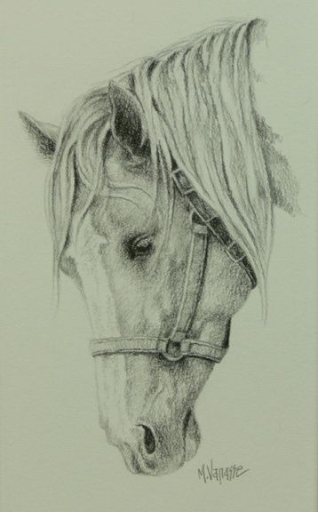 Tête de cheval 1 - Painting,  8x4 in, ©2011 by Marguerite Vanasse -                                                                                                                                                                                                                                                                                                                                                                                                                                                  Figurative, figurative-594, Cheval, tête de cheval, animal, animaux, graphite, dessin, crayon à mine