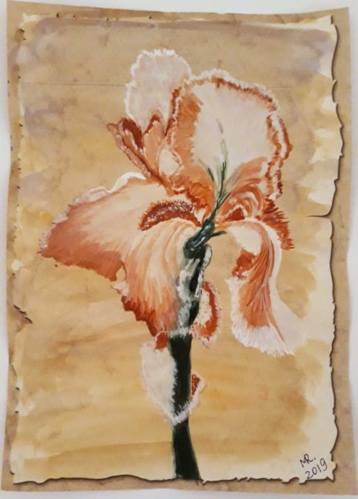 Chocolate iris - Drawing,  11.8x8.3 in, ©2019 by Marie Ruda -                                                                                                                                                                                                                                                                                                                                                                                                                                                                                                                                              Illustration, illustration-600, Flower, Botanic, blume, flower, iris, aquarelle, watercolor, paper, original art