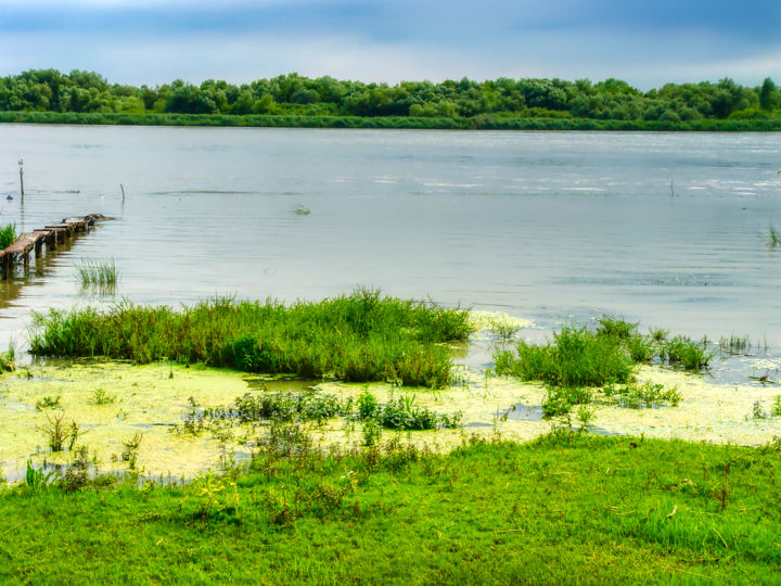 """Photography titled """"The Danube Delta"""" by Marian Bogatu, Original Art, Manipulated Photography"""