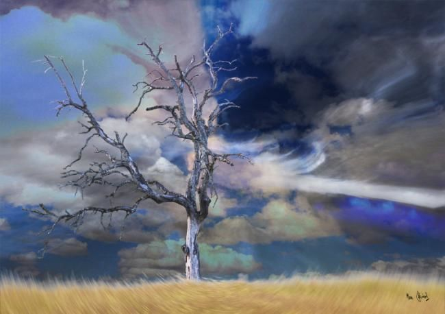 Arbre mort dans un champ - Digital Arts, ©2012 by Max Parisot du Lyaumont -