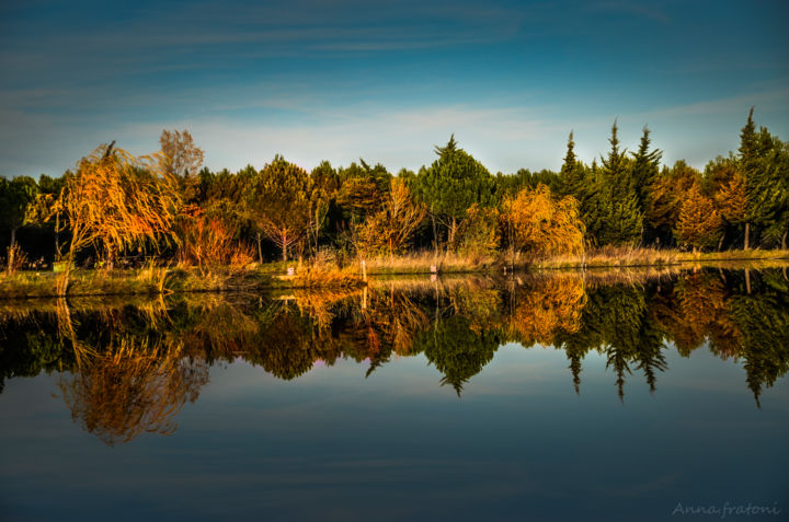 Réflections - Photography, ©2018 by Anna Fratoni -                                                                                                                                                                                                                                                                                              Tree, Colors, Water, Places, Nature, reflets