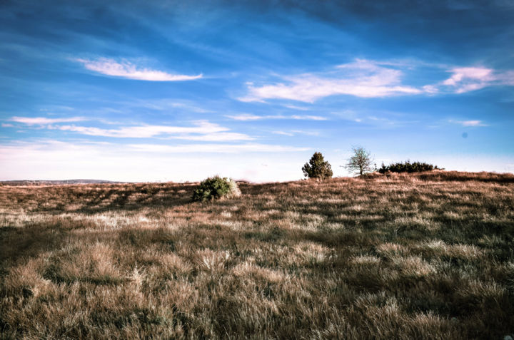 La colline - Photographie, ©2018 par Anna Fratoni -                                                                                                                                                                                                                                                                                              artwork_cat.Colors, La vie rurale, Lieux, Nature, Paysage, landscape