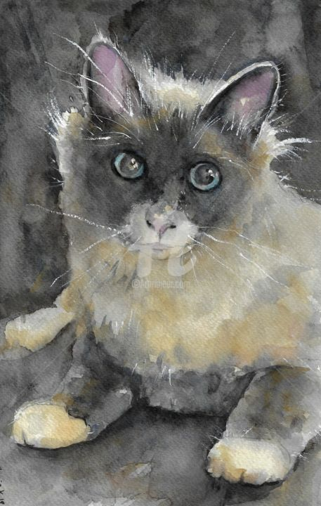 Lovely Kitty - Painting,  27x17.5 cm ©2019 by Melanie Kempkes -                                                    Performing Arts, Cats, Portraits, watercolor, cat, aquarell, drawing, animal, zeichnung