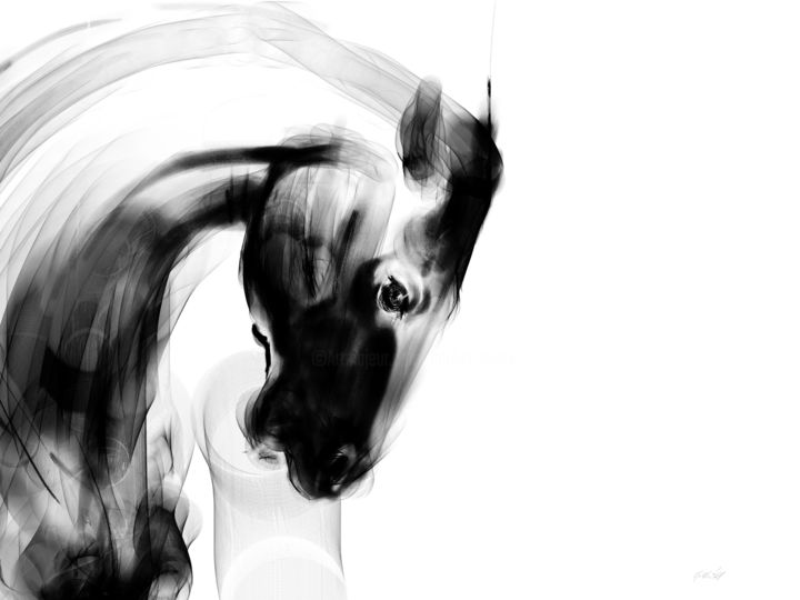 Horse 26 Head - Digital Arts, ©2020 by Michel Thiery (By Daesyl arts) -                                                                                                                                                                                                                                                                                                                                                                                                                                                                                                                                                                                                                                      Figurative, figurative-594, Animals, artwork_cat.Horses, Light, Nature, Black and White, Horse, horse head, horse art, horse artist, Pegase, black and white