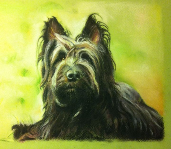 """Tempête"" - Painting,  30x40 cm ©2015 by Michèle Rais -                                                            Figurative Art, Paper, Animals, Briard, chien"