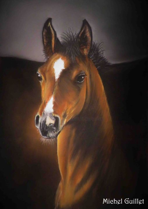 """Mistral gagnant"" - Painting,  40x30 cm ©2018 by Michel Guillet -                                                            Figurative Art, Paper, Horses, Portrait animalier de cheval, pastellistes de France, Talents aujourd'hui et demain"