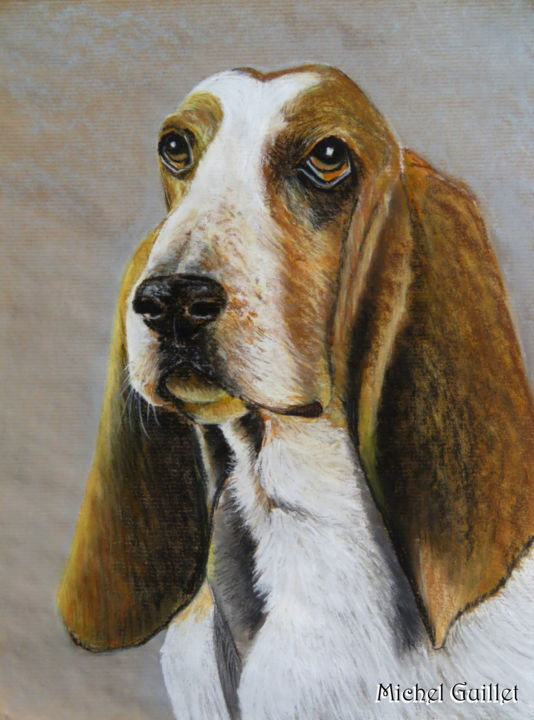 Colombo - Drawing ©2018 by Michel Guillet -                                                            Realism, Paper, Dogs, Basset hound, colombo, portrait animalier, pastelliste de france, talent aujourd'hui et demain, pastelliste animalier