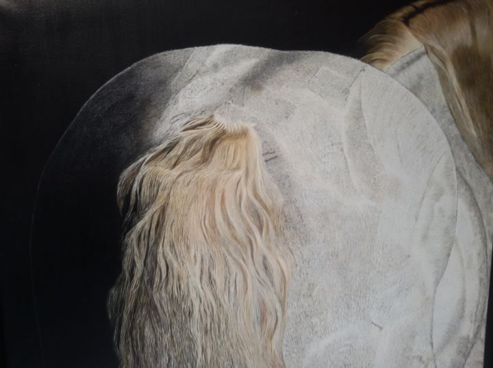 IMMACOLATA  huile sur toile 100x90 cm - Painting ©2019 by MICHELINE HANRARD LADOUL MHL. -                                            Figurative Art, Animals, cheval, blanc, figuratif