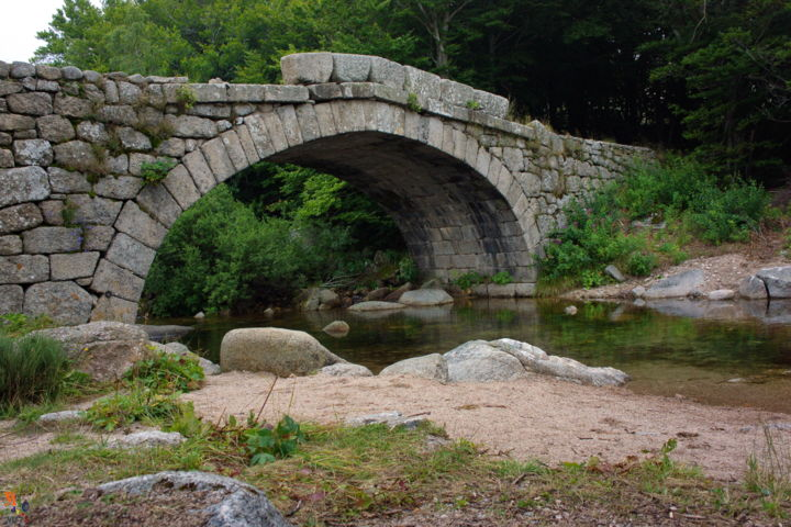 Pont sur le Tarn  (le Mont Lozère) - Photography ©2014 by Miodrag Aubertin -                                                Architecture, Nature, Mountainscape
