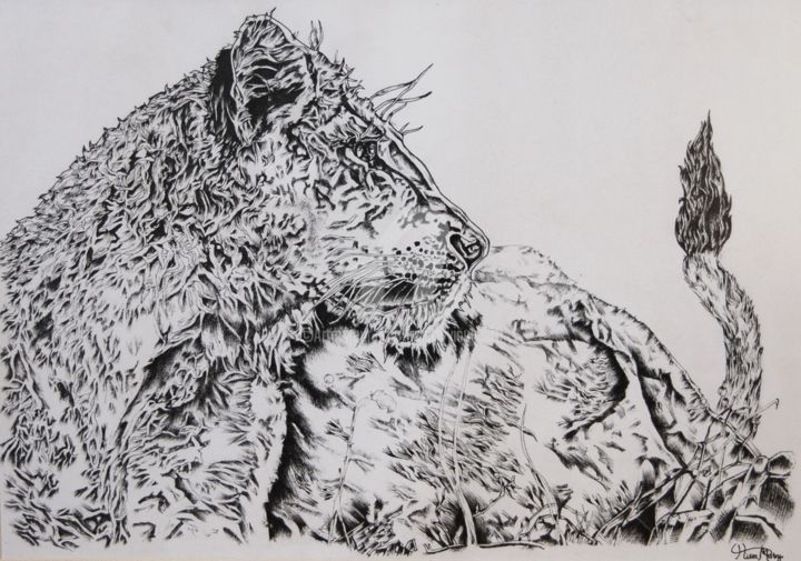 watchful eye - Drawing,  29.7x42x0.2 cm ©2012 by Mistry Visuals -                                                            Photorealism, Paper, Animals, art, drawing, lion, lion drawing, fine liner, wildlife, black and white