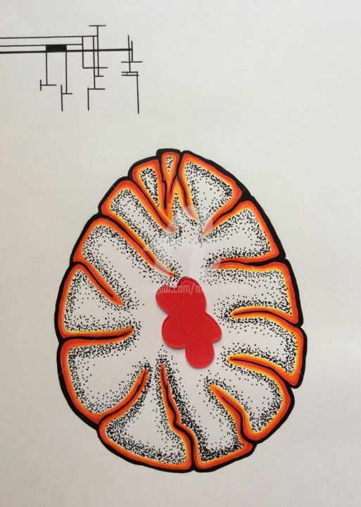"""Drawing titled """"Oeuf, coupe sagitale"""" by Mona Bessaa, Original Art, Marker"""