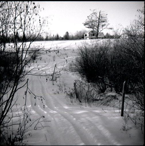Ayers Cliff path - Photography, ©2010 by Michel Robitaille -