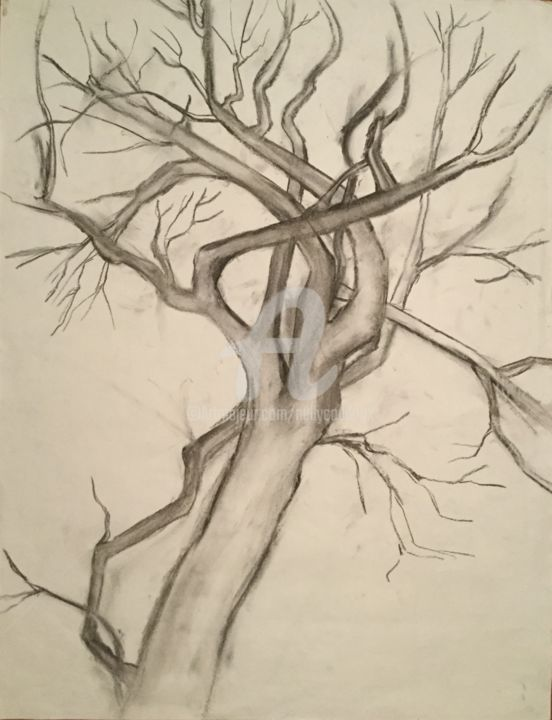 Hiver - Drawing, ©2017 by Nelly Coudoux -                                                                                                                                                                          Figurative, figurative-594, Tree