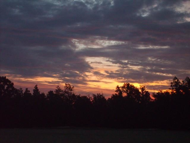 """Photography titled """"Natures Colors"""" by Nicole Tidmore, Original Art,"""