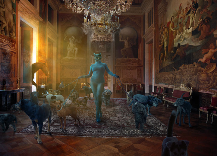 Of Cat and Dogs and One Black Horse, 65cm - Digitale Künste,  18,4x25,6 in, ©2019 von Nikolina Petolas -                                                                                                                                                                                                                                                                                                                                                                                                                                                                                                                                                                                                                                                                                                                                                                                                                                                                                                                                                                                                                                                                                                                                                                                                                                                                                                                                                                                                                  Conceptual Art, conceptual-art-579, Tiere, photography, digital, art, petolas, nikolina petolas, animals, animal, cat, cats, cat-woman, woman, rococo, contemporary, surrealism, animals, fine art, print, giclee, dog, dogs, horse, fairytale, surrealart, surreal, catwoman, hybrid, mythology