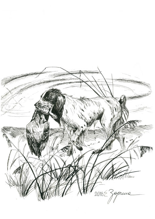 Game - Drawing,  40x30x0.1 cm ©2016 by Tatyana Zorina -                                                                                                                                                                                                            Illustration, Realism, Photorealism, Paper, Water, Seasons, Animals, Landscape, Nature, Birds, Travel, Rural life, Dogs, Black and White, Farm, spaniel, duck, hunting, hunter