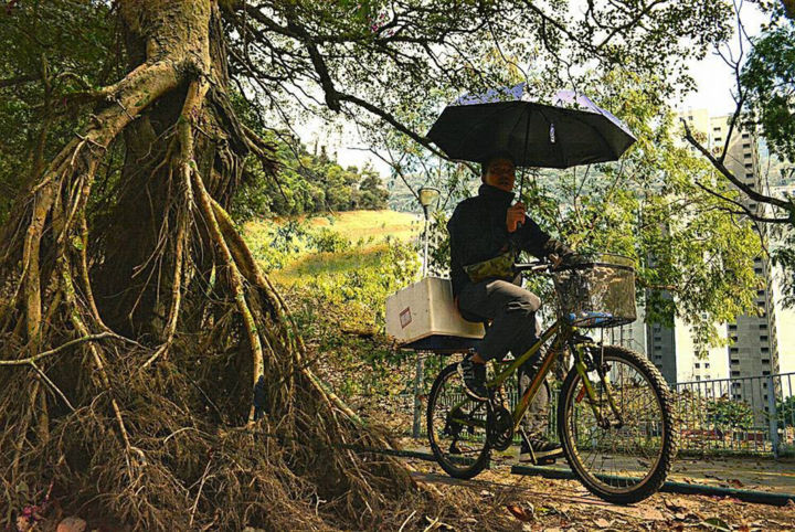 """Photography titled """"nature bike hk"""" by Olivier Barbaud, Original Art, Digital Photography"""