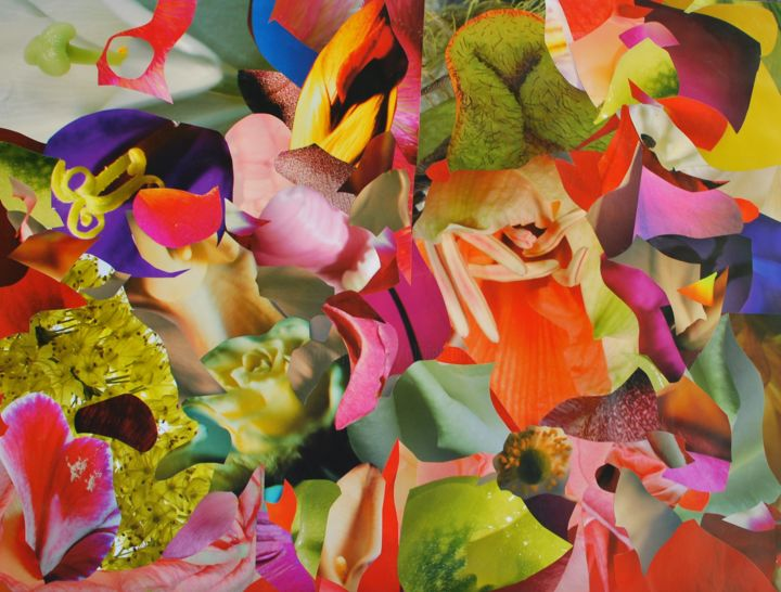 Flowersallaround - Collages,  19.7x25.6x0.2 in, ©2019 by Olivier Bourgin -                                                                                                                                                                                                                                                                                                                                                                                                                                                                                                                                                                                          Abstract, abstract-570, Abstract Art, Flower, Couleurs, Abstrait, Fleurs, Multicouleur, Flowers, Coulor, Surrealisme, Lifestyle