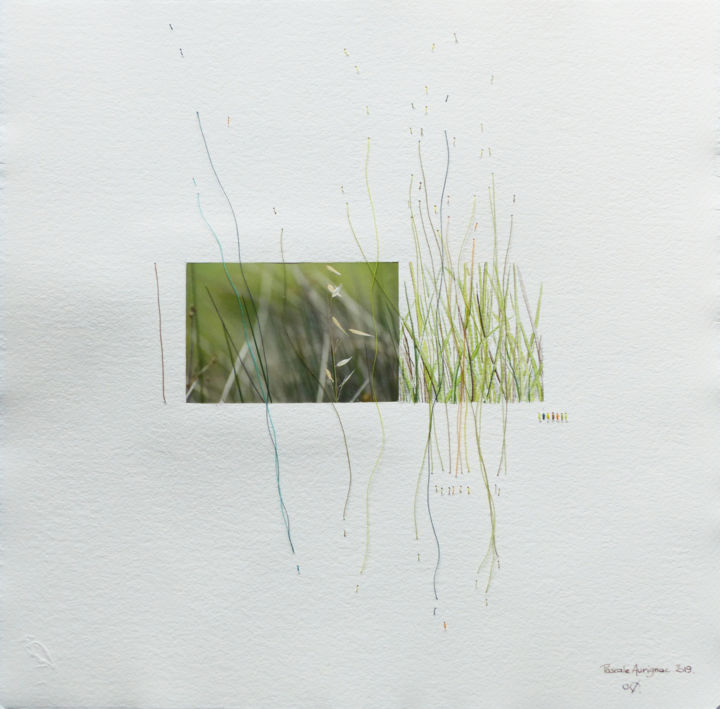 herbes folles - Mixed Media,  30x30 cm ©2019 by Pascale Aurignac -                                        Paper, Nature