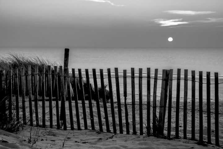 La palissade - Photography, ©2007 by Patrice CORBIN -                                                                                                                                                                                                                                                                                                                                                                                                                                                                                                                          Water, Black and White, Seascape, Beach, barrière, clôture, palissade, barrage, dune, sable, Black and White