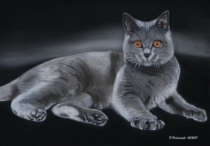 """Drawing titled """"Chartreux"""" by Patrice Preveirault, Original Art, Pastel"""